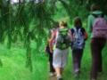 Des randonnées natures - Lozère Évasion