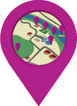 puce localisation violette